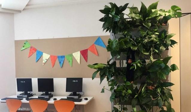 Vijf Westlandse scholen gaan hun klassen vergroenen met planten. Foto: (PR)