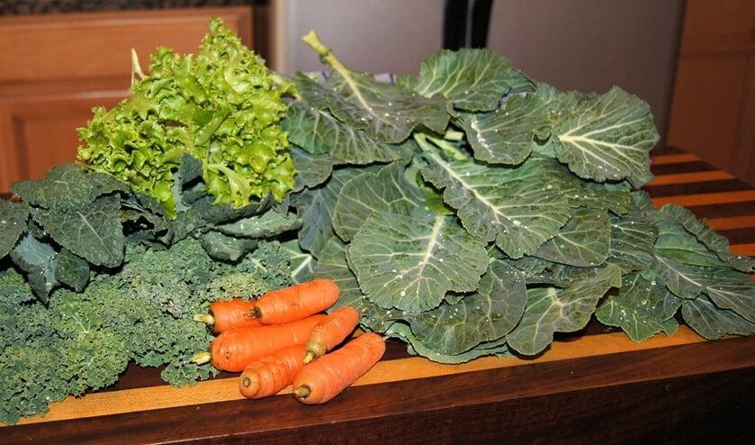 Het voorstel voor een groentetuin voor de voedselbank levert vragen op bij inzender.