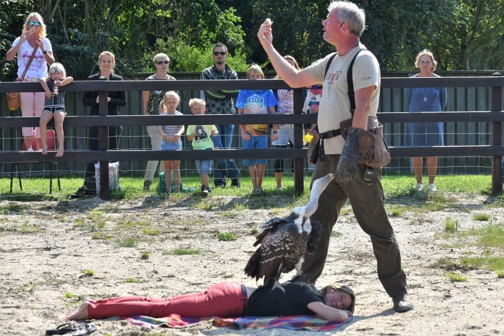 Bezoekers kregen een spectaculaire roofvogelshow voorgeschoteld.   © Groot-Westland.nl