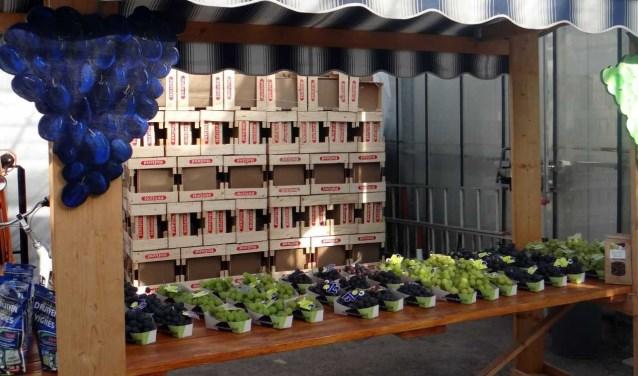 Er kan dit weekend tussen 10.00 en 16.00 uur geproefd worden van vijftig verschillende soorten druiven. Foto: (PR)