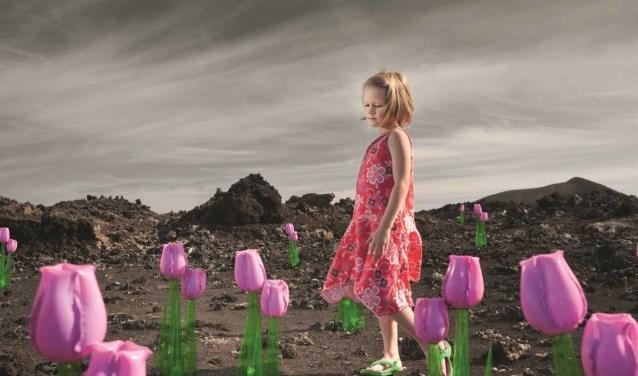 Van Waveren is een kroniek van een Hollandse tulpenfamilie, gebaseerd op waargebeurde verhalen.