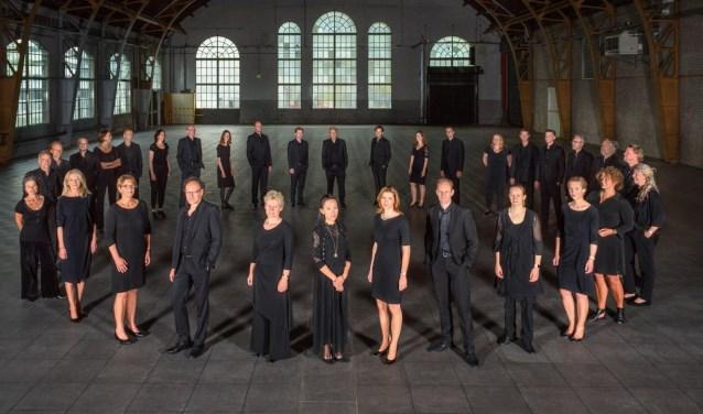 Het Vocaal Ensemble Musa staat onder leiding van Peter Dijkstra