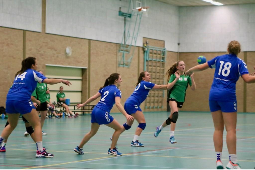 Foto: Theo van Kralingen © Voorne-putten.nl