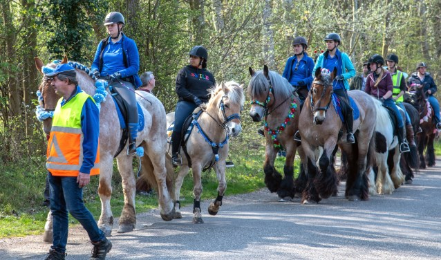De Lenterit van het Trekpaarden Team Rockanje trok veel bekijks. (Foto: Jos Uijtdehaage).