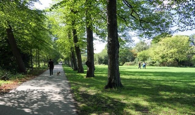 Groen brengt verkoeling en zorgt ervoor dat we ons prettig voelen in een stad. Met het veranderende klimaat keert groen sinds jaren weer terug in het stadsbeeld. (Foto: Groene Steden voor een duurzaam Europa)
