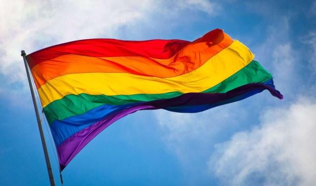regenboogvlag