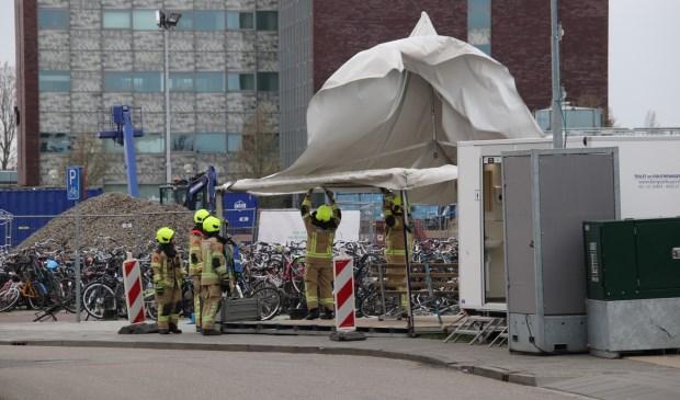 Foto: HV Zeeland © Internetbode