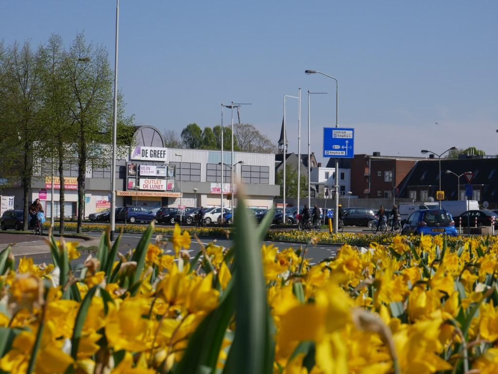 Bloemen in de bermen in Breda, Lunetstraat. Foto: Wesley van der Linde/groennieuws.nl © BredaVandaag