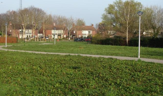 Momenteel is het voormalige terrein van Brabant Chemie in gebruik als groenstrook. Er kan gewandeld en gerecreëerd worden. Ook kunnen er kleine evenementen worden gehouden. Buurtvereniging 't Pleintje fungeert als beheerder.