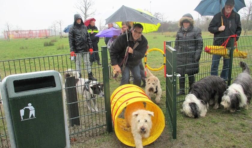 Op korter termijn komt er sowieso een hondenlosloopterrein in Oudenbosch.