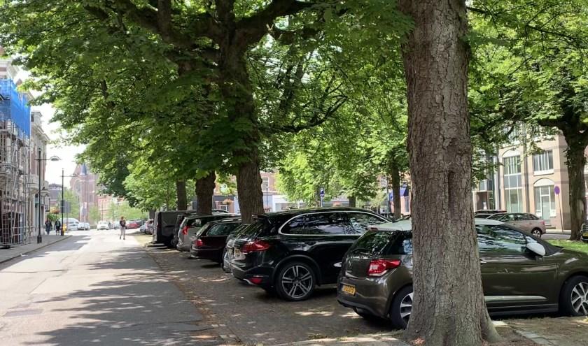 De twintig zieke kastanjes aan de Parkstraat worden gekapt en vervangen door 18 tulpenbomen. Ook verdwijnen er 18 parkeerplaatsen.