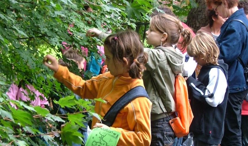 Kinderen tijdens een Kindermiddag aan het werk bij een opdracht.