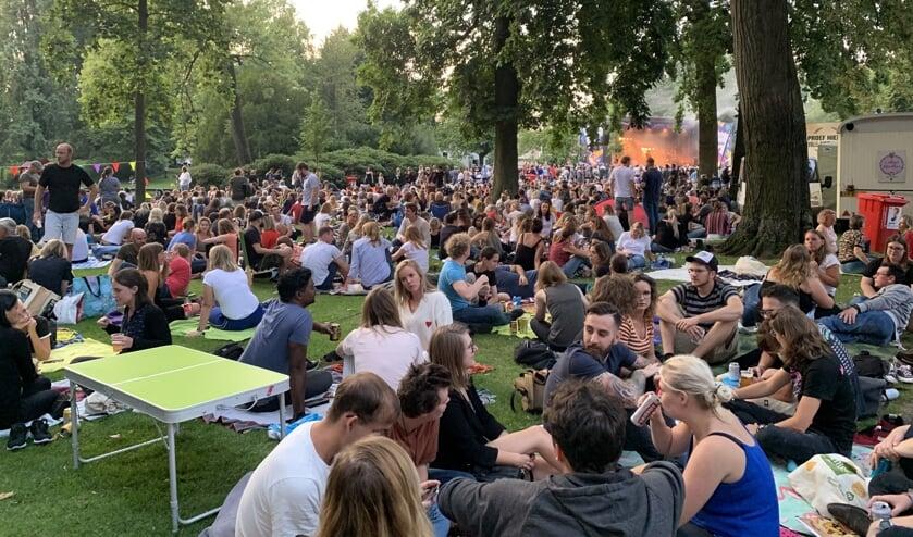 Het park tijdens het optreden van Voltage.