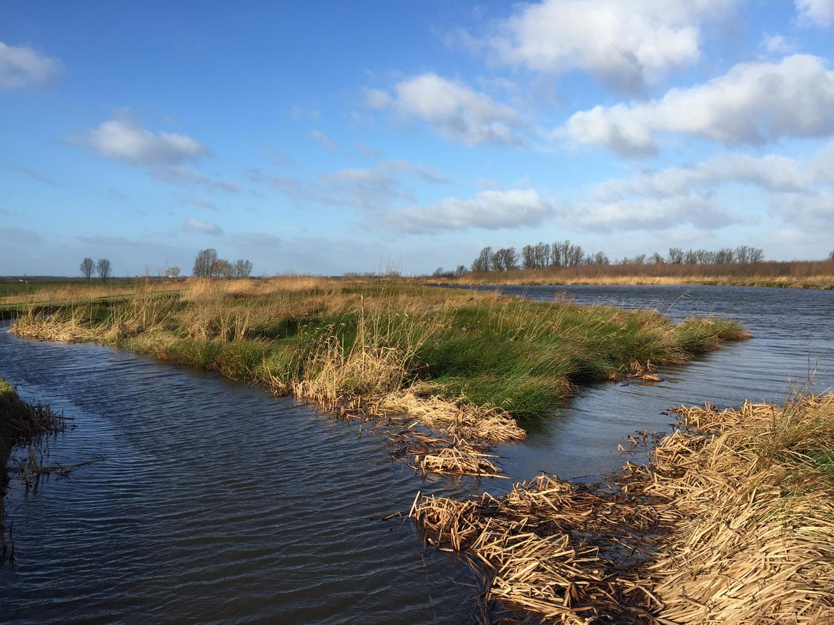 De bergboezem bij de Haagse Beemden staat voor een flink deel onder water na het hoog water van 9 en 10 januari 2015