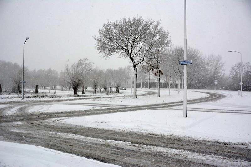 Besneeuwde Emerparklaan in de Haagse Beemden