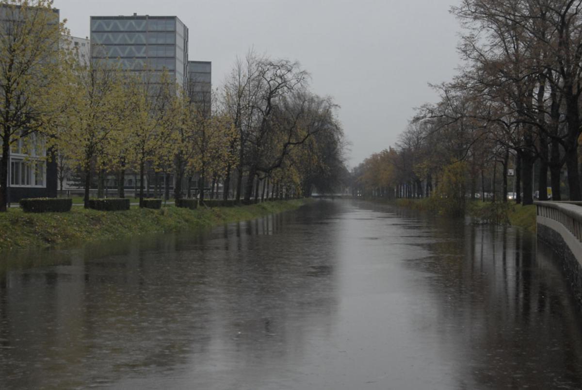 Het water bij de Chassésingel. foto Wijnand Nijs