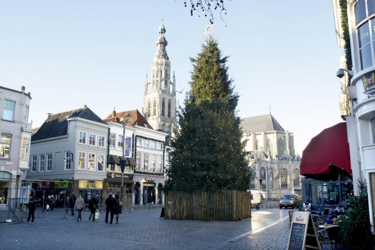 De Kerstboom op de Grote Markt. foto Sjoerd Lips
