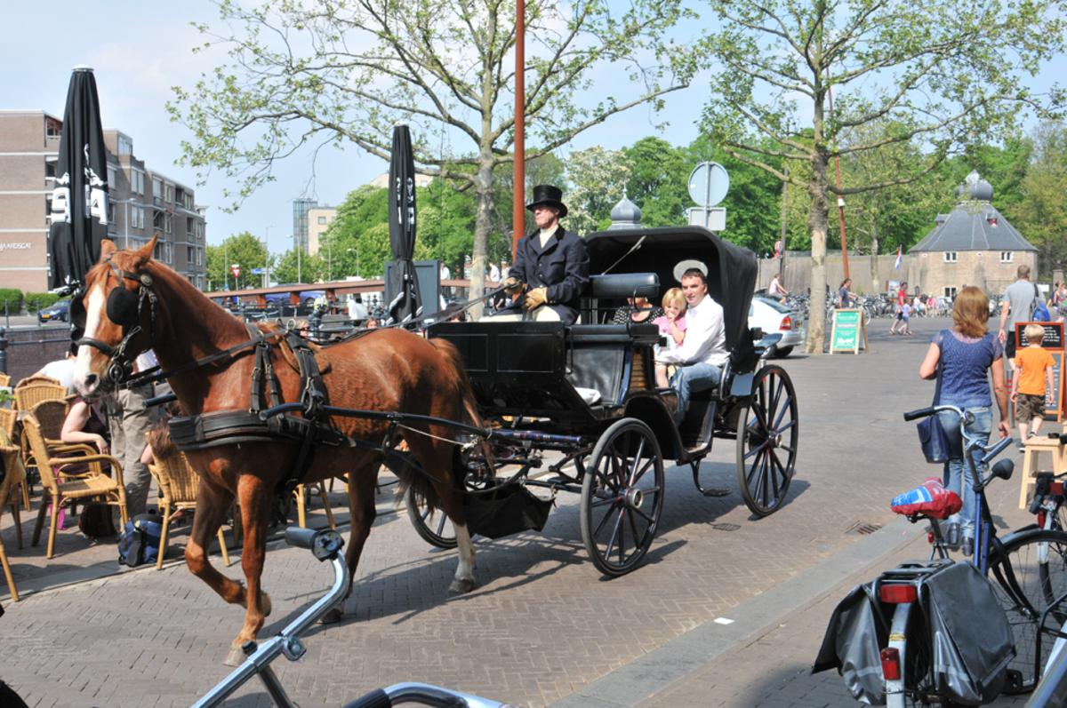 Paardenkoets. Foto: Perry Roovers