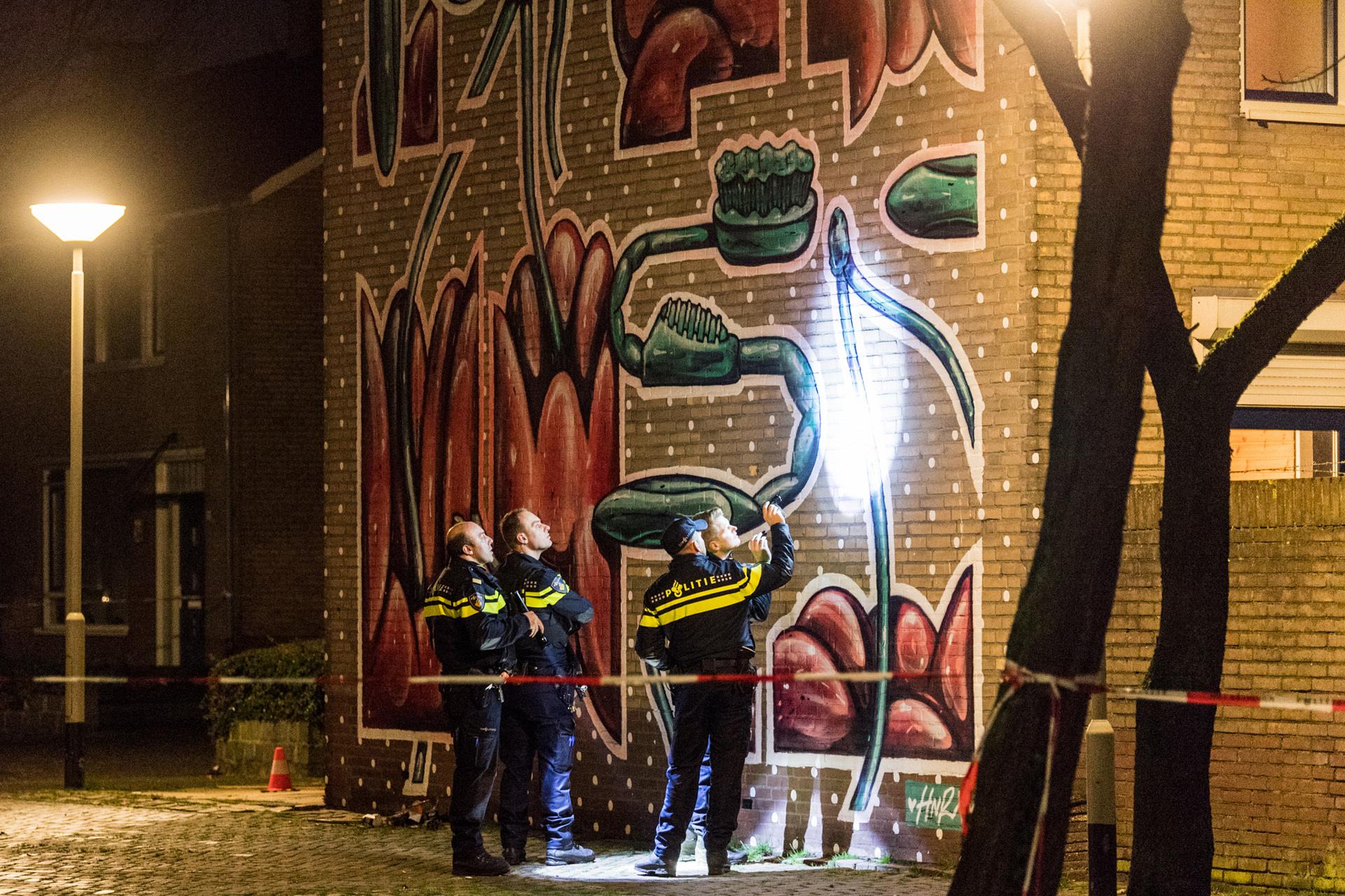 Twee huizen in de Hagehof en de Ahornstraat zijn in de nacht van vrijdag op zaterdag beschoten, even later brandde een auto uit aan de Ambachtenlaan.
