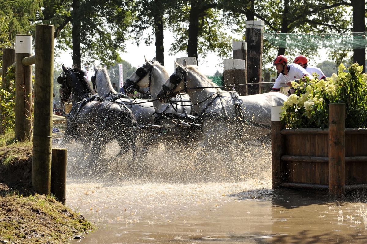 Outdoor Brabant in Breda. Met onder meer de vierspanwedstrijd. foto Janet Olde Wolbers