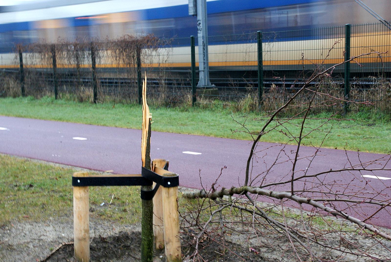 Vandalen hebben huisgehouden op Steenakker. BredaVandaag © BredaVandaag