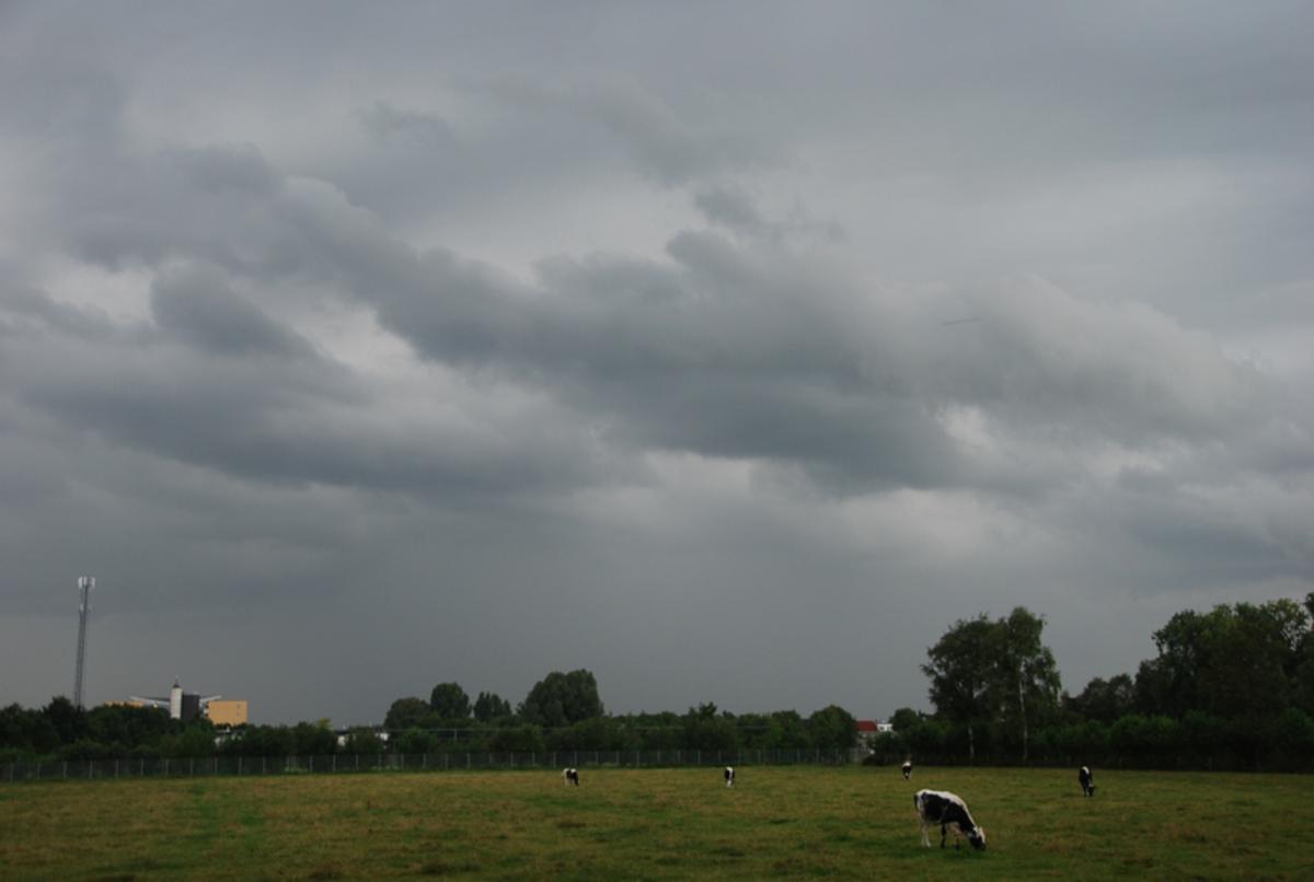 Een opkomende regenbui. Foto: Nico Koevoets.