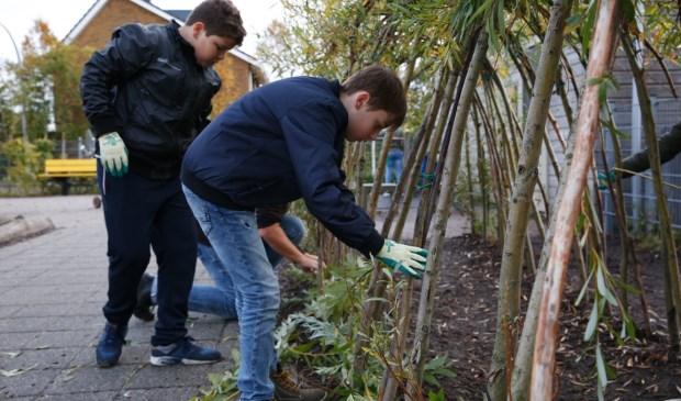 Leerlingen uit groep 8 gingen onder leiding van Werkse! aan het werk.