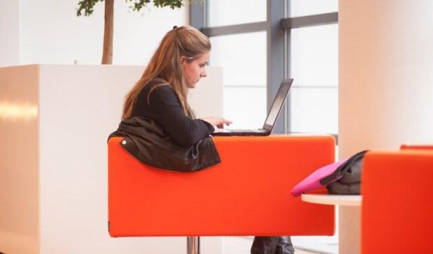 Vanaf januari 2018 kunnen studenten een online cursus van hun eigen universiteit of van een van de partners volgen.
