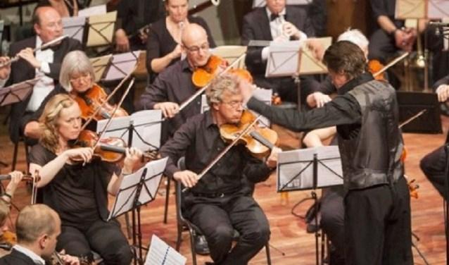 Het strijkorkest Camerata Terra Reno treedt op bij Op Hodenpijl (Foto: Marco Bons)