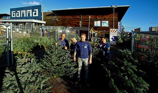 Het team van GAMMA Delft verkoopt weer de prachtigste Nordmann kerstbomen (Foto: Koos Bommelé)