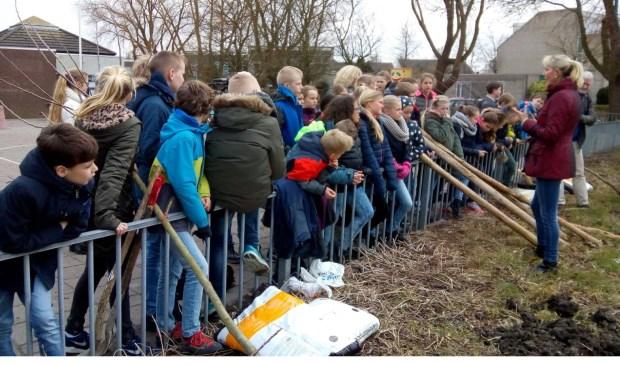 De leerlingen aan het werk op het schoolplein van de Mariaschool.