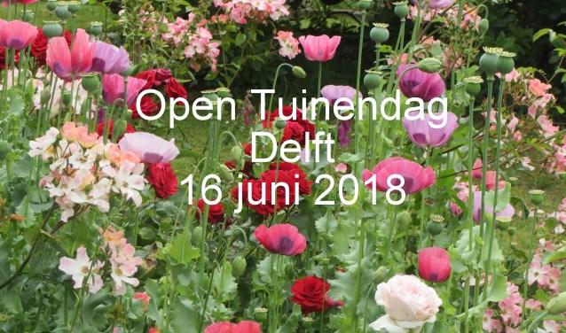 Bezoek verrassende tuinen met de Open Tuinendag op 16 juni