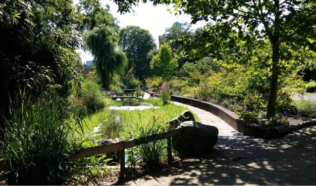 Tijd Voor Tuin : De botanische tuin bruist van de activiteiten delft op zondag
