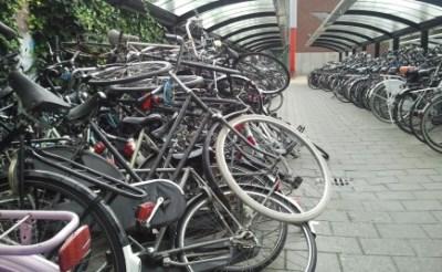 Gemeente ruimt fietswrakken op