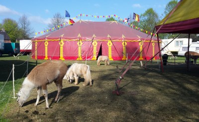 Circus Bossle in Liempde