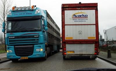 Chauffeur en transporteur beboet na dood varken