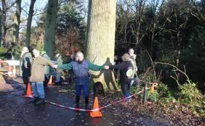 Eik in Boxtel wordt Wereldboom