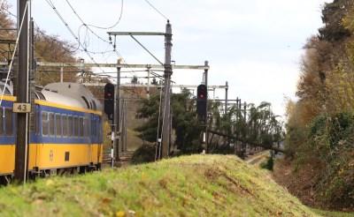 Boom waait op spoorlijn