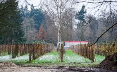 Herenboerderij in Vlaamse schuur