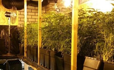 Boxtel sluit opnieuw drugspand