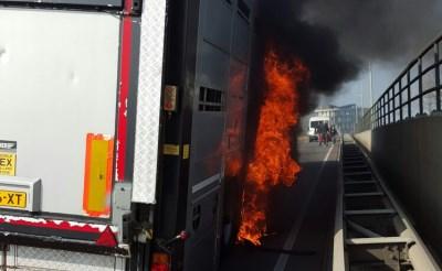 Truck met varkens in brand op Keulsebaan
