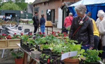 Plantjesmarkt Kinderboerderij