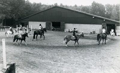Rekkendonken brengt paardenfans samen op reünie