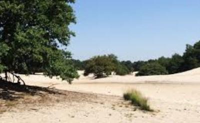 Europa's grootste zandverstuiving...