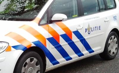 Politieauto belandt in sloot