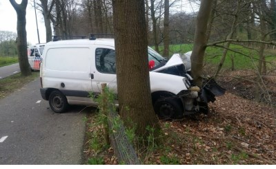 Auto botst op boom Gestelseweg