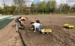 'Tuinieren met plezier' in voedseltuin