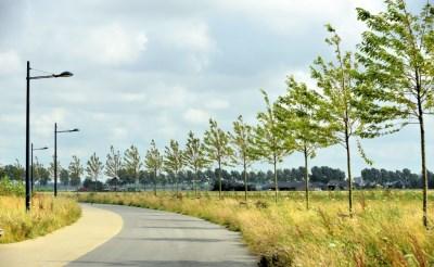 Landschapstriënnale naar Groene Woud
