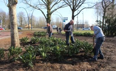 3.000 planten nabij 'dino-rotonde'