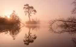 Boxtelse wint fotowedstrijd waterschap De Dommel